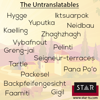 The Untranslatables